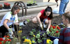 Earth Club Plans a Butterfly Garden