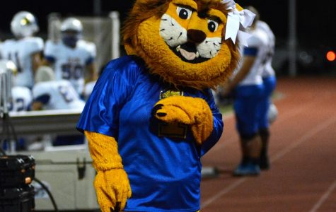 Mascot Allyson Harris shows her school spirit during a football game.